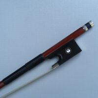 New 3/4 Violin bow Silver mounted Pernambuco wood stick horn Frog Parisian eye