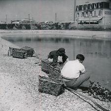 COURSEULLES c. 1950 - Parc aux Huîtres Calvados Normandie - DIV1304