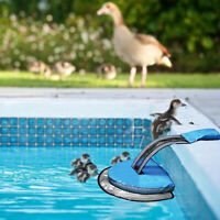 Swimming Pool Animal Saving Escape Ramp Network Frogs Toads Save Cleaner Tool