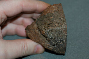 NWA Meteorite 194 grams (6.8 oz), Cut and Smoothed Face