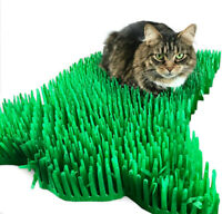 Tissue Paper Grass Mat for cat or kitten toy UK FAST DELIVERY pet toys.