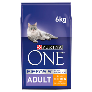 Purina ONE Adult Chicken and Whole Grain Dry Cat Food - 6kg