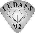 LEDASS92 Hundehalsband Strass Name