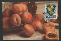 SAN MARINO MK 1958 FLORA PFLAUMEN PLUM MAXIMUMKARTE MAXIMUM CARD MC CM d2493