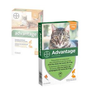 ADVANTAGE¹0.4 x 4 pipettes  Ticks and flea treatment Cat - 4 kg antiparasitaire