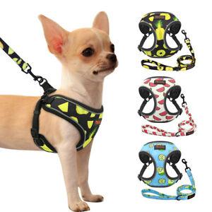 Reflective Dog Harness and Leash Set Adjustable Breathable Vest Fashion Pattern
