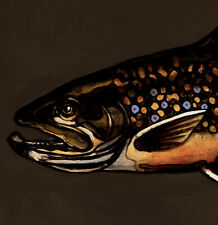 More details for trout : original oil painting : lure fly fishing game fish art by david andrews