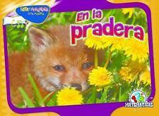 En la pradera (Matematicas: Leer y aprender con alegria) (Spanish Edition)