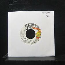 "Sanchez & Lady Saw Picture On The Wall 7"" VG+ Vinyl 45 John John Records"