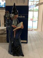 1978 Royal Doulton Male Figure Figurine The Wizard Cat Owl Hn 2877 Maslankowski