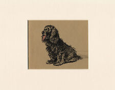 SEATED BLACK COCKER SPANIEL LOVELY 1934 CECIL ALDIN DOG ART PRINT READY MOUNTED