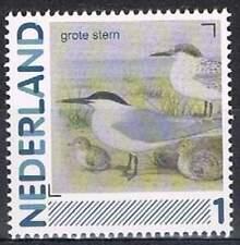 Persoonlijke zegel Vogels / Birds MNH 2791-Aa-21: Grote Stern