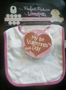 Baby Girl Bib & 12 Holiday Stickers The Perfect Picture by Lovespun. Great Gift!