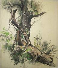 Russian American Listed, Constantin Astori Original Pastel Drawing Tree, COA