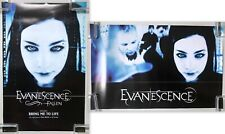 """Evanescence Fallen 2003 Wind-Up Double-Sided Promo Poster 25"""" x 16"""" Amy Lee"""