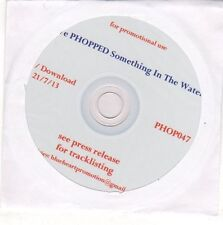 (EO559) Various Artists, We Phopped Something In The Water - 2013 DJ CD