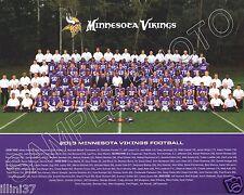 2013 MINNESOTA VIKINGS NFL FOOTBALL TEAM 8X10 PHOTO PICTURE