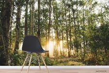 New Listing3D Sunshine Forest Landscape Wallpaper Wall Murals Removable Wallpaper 268