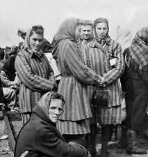 WWII Photo Concentration Camp Female Prisoners  WW2 B&W World War Two / 2179