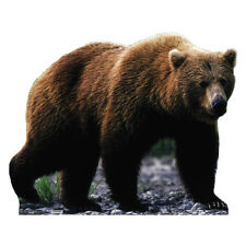 GRIZZLY BEAR Lifesize CARDBOARD CUTOUT Standee Standup Poster FREE SHIPPING