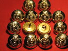 BRITISH ARMY R.A.M.C RAMC BUTTONS QTY OF 14  SIZE LARGE 24MM APPROX