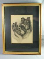 1929 Signed Pencil Charcoal Drawing LASSIE SHELTIE ROUGH COLLIE Dogs