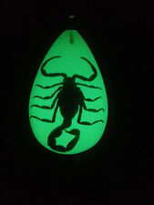 REAL Black Scorpion Pendant/Necklace Luminescent Resin Glows in the Dark!