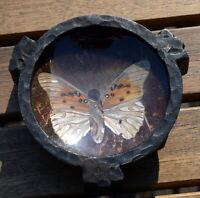 Coupelle vide poche en fer forgé et aile de papillon Art Deco signée BUTTERFLY