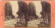Arles Les Alyscamps Photo Stereo Vintage Albumine ca 1875