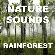 Nature Sounds Raining Jungle Thunder Lightning Special FX DIGITAL DOWNLOAD