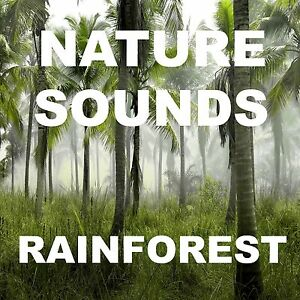 Nature Sounds Raining Jungle Thunder Lightning Relaxation CD Special FX