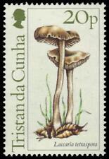 """TRISTAN da CUNHA 353 (SG370) - Mushrooms """"Laccaria tetraspora"""" (pa94008)"""