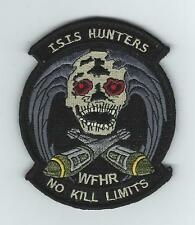 "555th FIGHTER SQUADRON ""ISIS HUNTERS-WFHR"" patch"