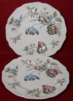 JOHNSON BROTHERS china DAY IN JUNE Multicolor Bread Plate Set of Two (2) 6-1/4""