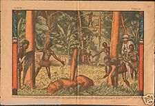 Hunter Chasseur Chasse Lion Pygmy Afrique Occidentale Africa 1933 ILLUSTRATION