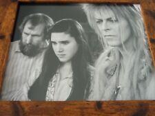 Framed Original Print Jim henson Labyrinth loot crate DX Porters #5 david bowie