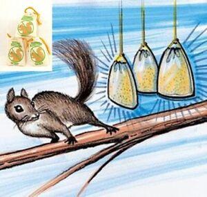 Squirrel Repellent Chaser Natural Ingredients Bird Feeders Garden SET OF 3 NIB
