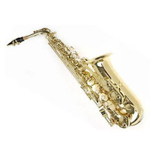 HOLIDAY SALE Sky Alto Saxophone hard +soft case high #F+ Reeds SAX *GREAT GIFT*