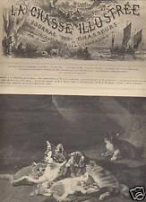 LA CHASSE ILLUSTREE 1893 N 26  AU PAYS DES VAUTOURS