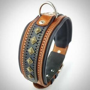 Bestia ''Balteus'' big dog collar. 2.5 inch wide. studded genuine leather.
