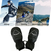 Mens Ski Gloves Large Winter Mittens Waterproof Insulated Snow Boarding Golf US