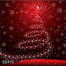 Christmas 10'x10' Computer-painted Scenic Photo Background Backdrop SZ410B10