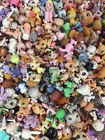 Littlest Pet Shop random Lot of 5 pets  LPS mouse Dog Cat Horse & More Authentic
