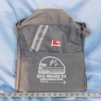 Vintage Northwestern Travel Carry-On Luggage Suitcase Overnight Bag dq