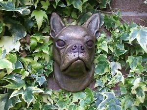 BOSTON TERRIER DOG HEAD BRONZED STONE WALL SCULPTURE