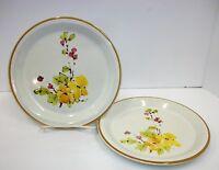 Endura by Wellin - 503 Springtime - Set of 2 Bread Dessert Plates