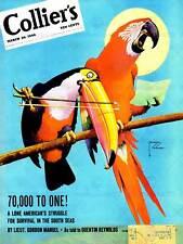 Vintage magazine cover perroquet tucan music 1946 new fine art print poster CC5074