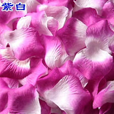 500 Gradient Purple with White Silk Plum Flower Petals Wedding Supplies HM