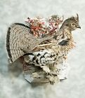 Alaskan ruffed grouse pheasant taxidermy bird art