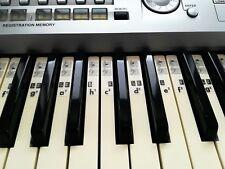 Piano Klavier Keyboard Musik Noten Aufkleber C-D-E-F-G-A-H